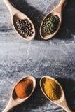 4 деревянных ложки с красочными специями Стоковое Фото