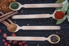 4 деревянных ложки с различными специями Стоковые Изображения