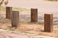 4 деревянных столба стоковое изображение rf