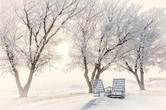 2 деревянных стуль сидя ямой огня предусматриванной в снеге Стоковые Фото