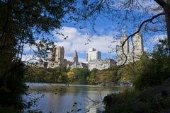 Дерев-обрамленные здания NYC стоковое фото rf