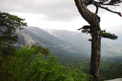 Держатель Ai-Petri на высоте 1234 метров стоковые фото