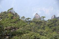 Держатель Sanqing, Sanqingshan, Цзянси Китай Стоковые Изображения