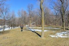 Держател-королевский и люд в зиме Стоковая Фотография RF