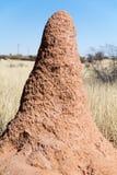 Держатель термита стоковые изображения