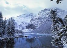 Держатель Эдит Cavell, канадские скалистые горы Стоковая Фотография