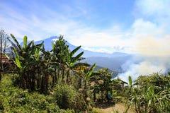 Держатель Kinabalu, Sabah, Малайзия, Борнео Стоковые Фотографии RF