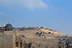 Держатель Olivet, Израиль Стоковое Изображение