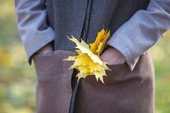 Держать кленовые листы Нося стильное серое пальто Стоковые Изображения