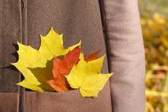 Держать кленовые листы Нося стильное серое пальто Стоковые Изображения RF