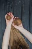 Держать кокос в руках Стоковая Фотография RF