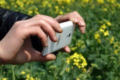 Держать мобильный телефон Стоковые Фото