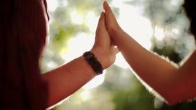 Держать руки в пар влюбленности в зеленом лесе Солнце лета испускает лучи видеоматериал