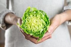 Держать свежую китайскую капусту в руках Стоковое Фото