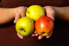 держать яблок стоковое изображение rf