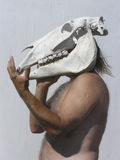 держа череп человека лошади 02 старый Стоковое Изображение RF