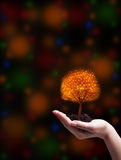 Держите волшебство рождества живым Стоковая Фотография
