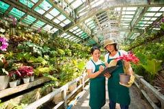 Держите показатели цветков стоковая фотография rf