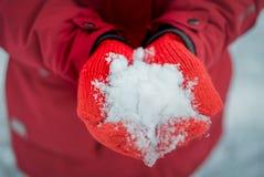 Держит снег в красных mittens Стоковые Фотографии RF