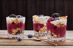 Десерты югурта дерева с свежими ягодами и muesli Стоковые Изображения RF