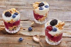 Десерты югурта дерева с ягодами и muesli Стоковые Фото
