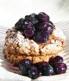 десерт голубики стоковое фото rf