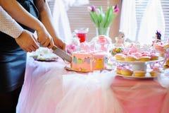 Десерт детского душа Стоковое Изображение RF