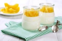 Десерт плодоовощ с мангоом стоковые изображения rf