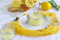 Десерт творога лимона очень вкусный и здоровый на белой желтой предпосылке Взгляд сверху Плоское положение стоковое фото rf