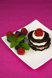 Десерт шоколада с взбитой сливк Стоковые Фотографии RF