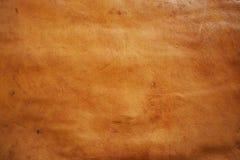 детализированная высоки кожаная текстура поверхности кожи Стоковое Изображение