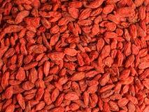 Детализируйте высокое фото крупного плана разрешения ягоды goji wolfberry - стоковые изображения