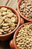 детализируйте legumes Стоковое Изображение