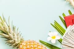 Детали перемещения плоские положенные: свежие ананас, цветок, деньги наличных денег, паспорт, тапочки пляжа и лист ладони E r стоковые фотографии rf