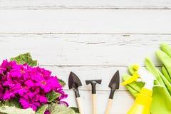 Детали сада плоские положенные Зеленый бак с зацветая пурпурными цветками, аппаратурами и резиновыми перчатками лежа на белой дер стоковые фото