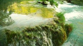 Детальный взгляд красивых водопадов в национальном парке Plitvice, Хорватии видеоматериал