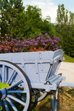 деталь автомобиля декоративная цветет деревянное Стоковое Фото