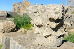 Деталь в римских руинах, старый римский город столбца Volubilis Марокко Стоковые Фотографии RF