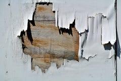 Деталь загубленной белой деревянной двери Стоковая Фотография RF