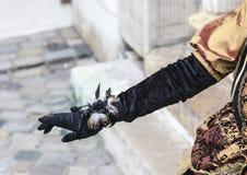 Деталь костюма - масленица 2013 Анси венецианская Стоковые Изображения