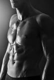 Деталь молодого без рубашки мышечного человека Стоковая Фотография RF