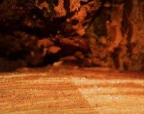 Деталь на отрезке древесины стоковое фото rf