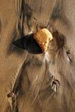 деталь пляжа Стоковые Фотографии RF