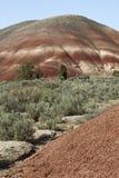 Деталь, покрашенные холмы блок, национальный монумент дня Джна Стоковая Фотография