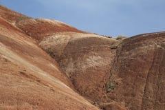 Деталь, покрашенные холмы блок, национальный монумент дня Джна Стоковые Фотографии RF