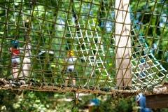 Деталь препятствия сетки в зеленой спортивной площадке приключения леса Стоковое Изображение RF