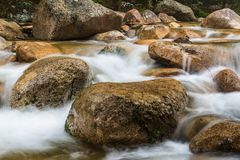 Деталь ручья Sabbaday, белые горы стоковые фотографии rf