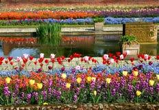 деталь садовничает дворец kensington sunken Стоковое Фото