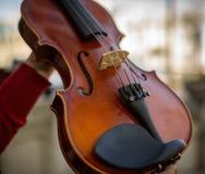 Деталь скрипки стоковая фотография