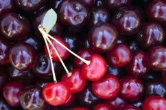 Деталь снятая от красных вишен стоковое изображение rf